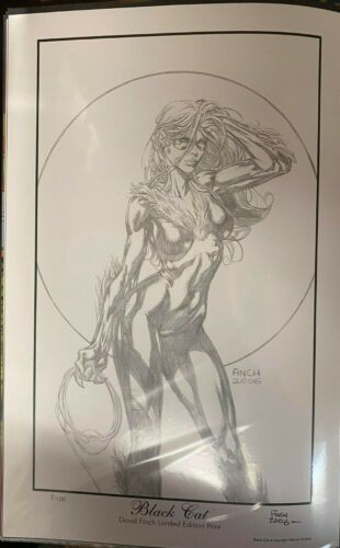 SEXY BLACK CAT LIMITED EDITION 8/100 DAVID FINCH SIGNED PRINT 11 X 17 #oa-1134