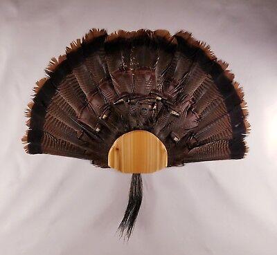 Fan Mount Kit - DIY Turkey Fan & Beard Mount Kit