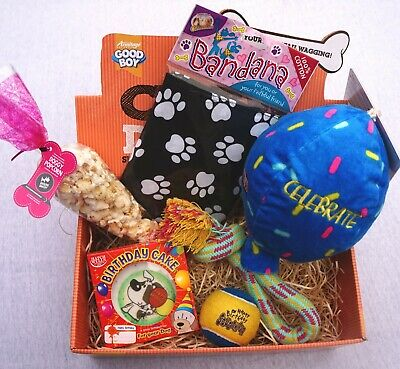 DOG GIFT BOX WITH DOG BANDANA BIRTHDAY BALLOON TOY POPCORN & DOG BIRTHDAY CAKE