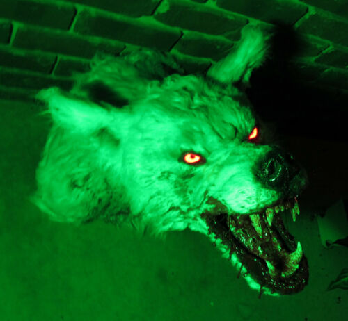 Bloody white werewolf wall mount w glowing LED eyes vampire haunted house goth