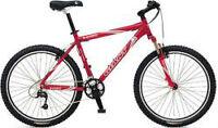Giant Rincon Mountain bike