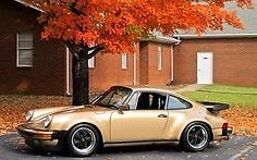 Old 911 projects the worse the better !!!