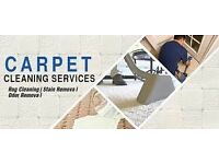 Short notice professional carpet cleaning/sofa/rug/curtains/and upholstery