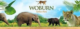 1x Woburn Safari Park ticket RRP £23 1 Day Entry - Use Anday Anytime - Adult