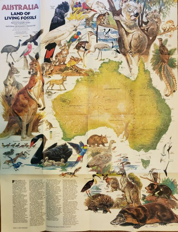 Australia - Land of Living Fossils Map / Poster - 1979 - National Geographic