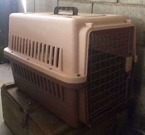 Large Dog / Cat Animal Carry Cage Beenleigh Logan Area Preview