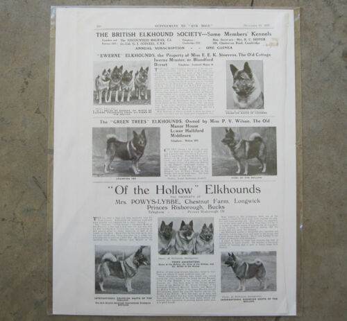 """Vintage The British Norwegian Elkhound Society sup to """"Our Dogs"""" ~ Dec 1937"""