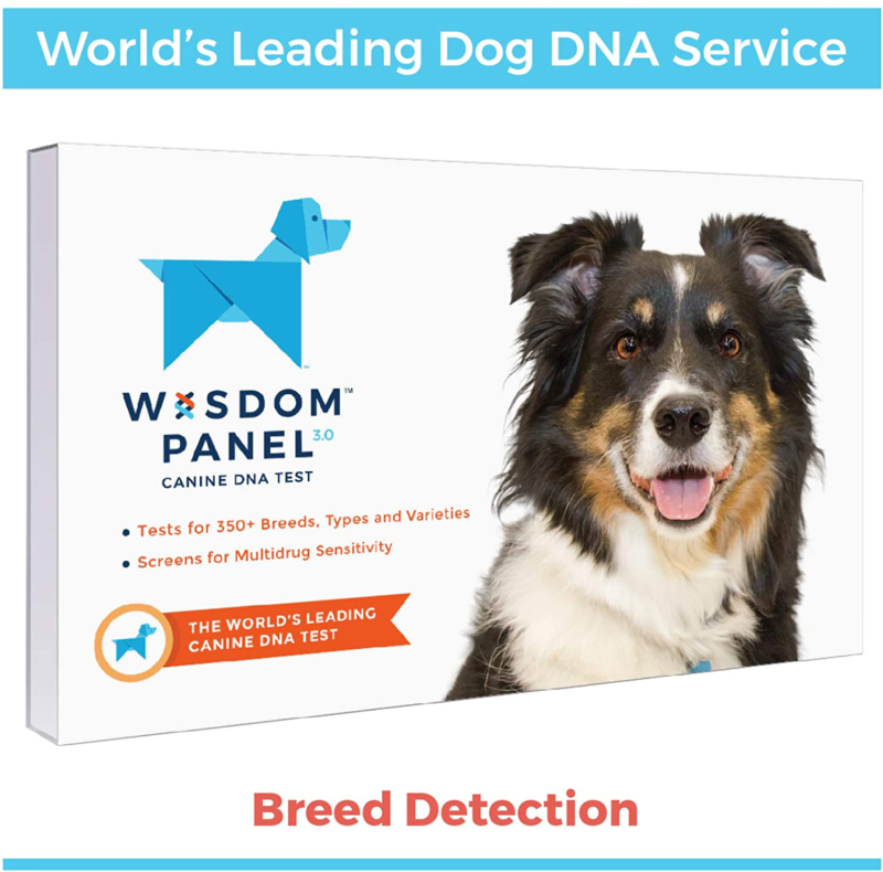 Wisdom Panel 3.0 Canine DNA Test DNA Test Kit for Breed Ance