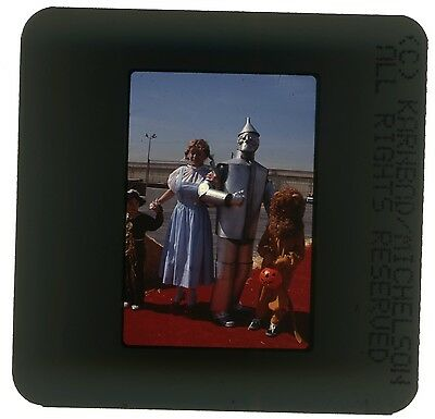 35Mm Color Photo Slide The Wizard Of Oz Twoo People In  Costumes Halloween