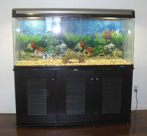 Details about 125 gallon fish tank Aquarium