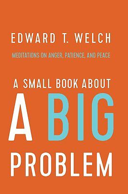 A Small Book About A Big Problem  Meditations On Anger  Patience  And Peace  Pb