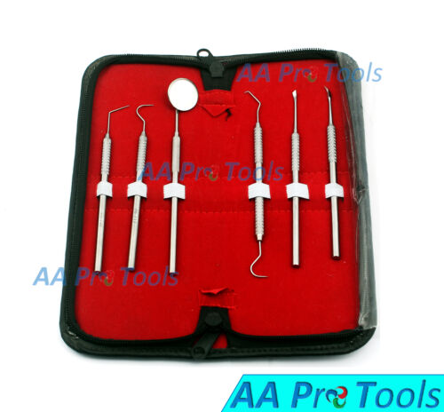 6 Pcs Dental Scaler Pick Stainless Steel Tools with Inspection Mirror Kit Pr-255