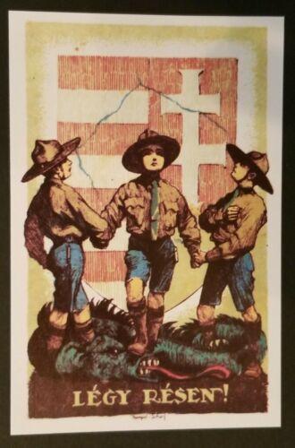 Mint Vintage Hungary Boy Scouts Legy Resen Illustrated Postcard