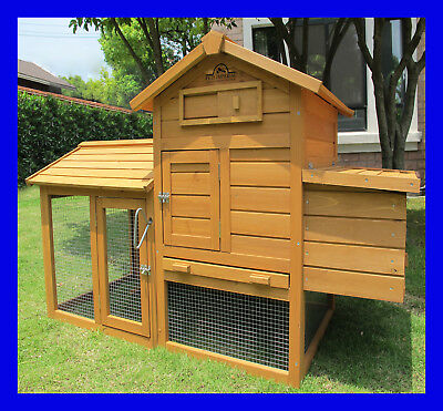 Pets Imperial® Clarence Chicken Coop