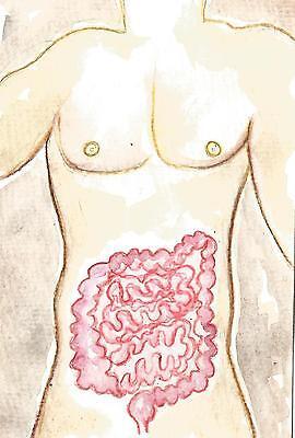 CROHNS DISEASE ULCERATIVE COLITIS IBD ART / Original 4x6