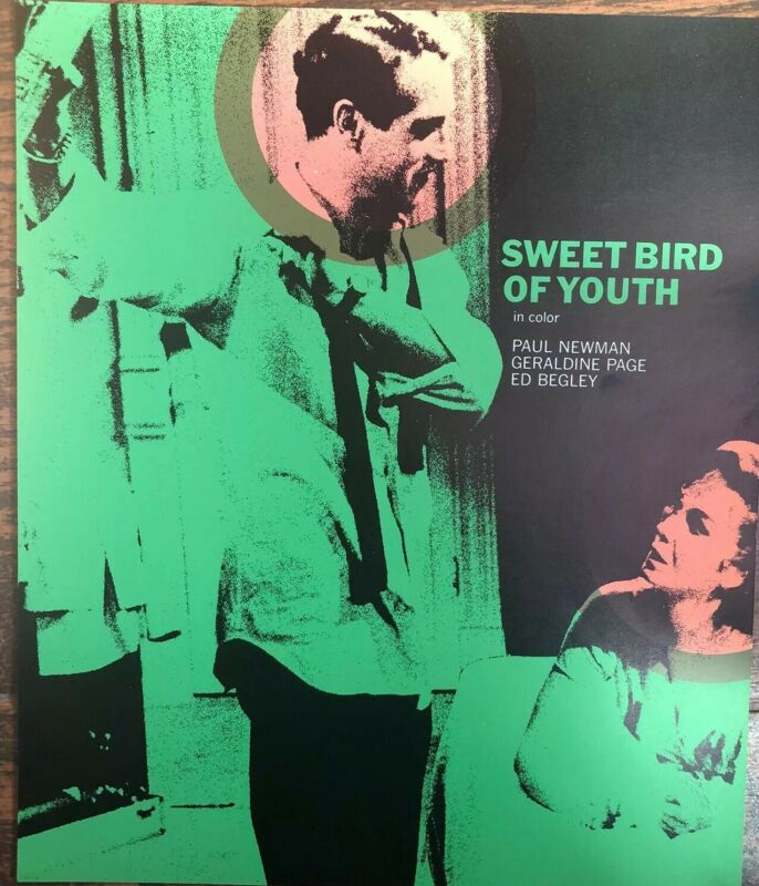 Sweet Bird Of Youth Paul Newman Press Promo Movie Still Color 1966 Movies 8x10