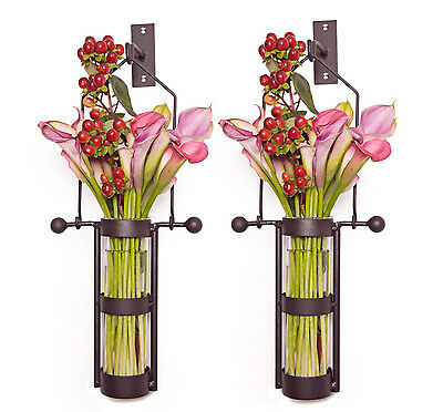 Danya B™ Wall Mount Hanging Glass Cylinder Vase Set QB102-2
