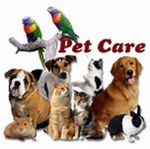 Housesitter Housekeeper Petsitter Garden Care Available Central QLD Region Preview