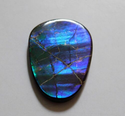 46.25 Cts Natural Canadian Ammolite Cabochon Loose Gemstone 37X27X4.5 MM SS16