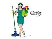 WG Domestic cleaning services