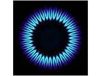 GAS & ELECTRIC COOKER REPAIR