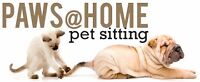 Paws@Home - Professional Pet Sitting by Veterinarian Assistant