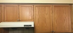 Full Kitchen Cabinet set with exhaust fan