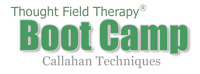 Thought Field Therapy Boot Camp