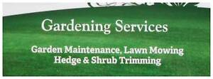 Peter's Gardening & Lawn Maintenance Burleigh Waters Gold Coast South Preview