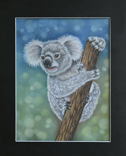 Koala Bear Pastel Art Original