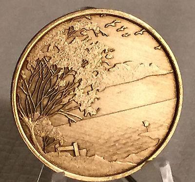 Serenity Lake Prayer Bronze Medallion Chip Coin AA Alcoholics Anonymous NA
