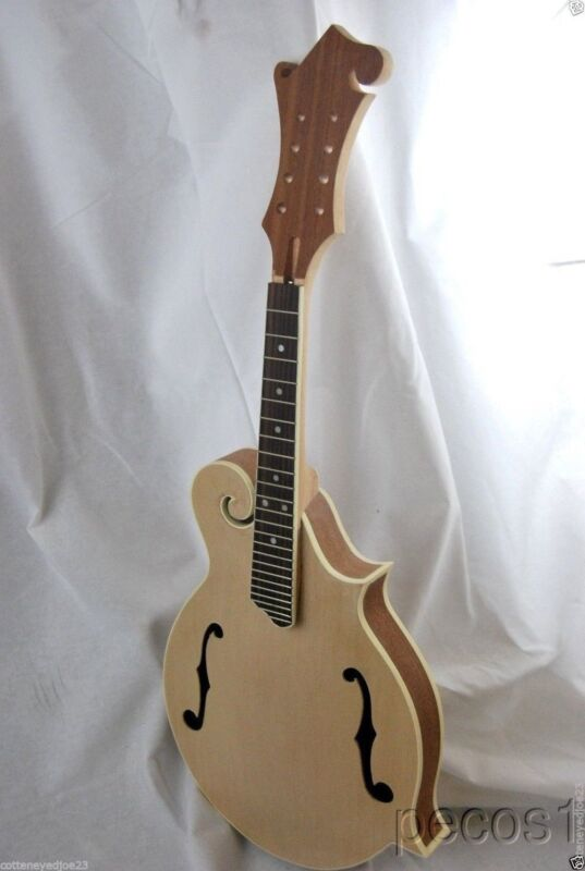 DIY MANDOLINS-DO IT YOURSELF-8 string KENTUCKY STYLE F MANDOLIN KIT
