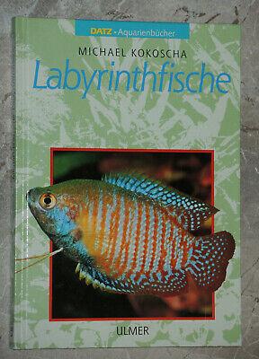 Labyrinthfische -- Labyrinth Fische -- Datz - Aquarienbücher