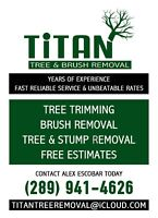 Titan tree and Brush Removal services