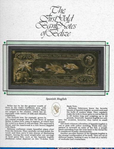 22kt Gold $75 Belize 1981 Banknote- SPANISH HOGFISH - RARE UNC