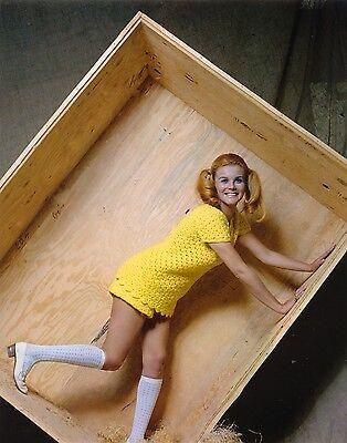 ANN-MARGRET SEXY TEEN SCHOOLGIRL PHOTO - Teen Schoolgirl Movies