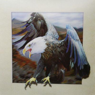 3D Lenticular Poster - Eagle Landing -16 x16 Print