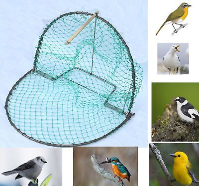 US 40cm Bird Pigeon and Quail Humane Live Trap Hunting 16 Inch Trapping