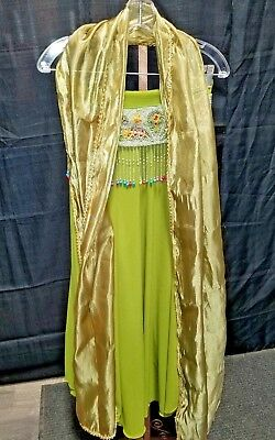 Sexy Belly Dancer Gypsy Harem Girl Adult Costume Halloween Women's Green Bedlah - Adult Belly Dancer Costume