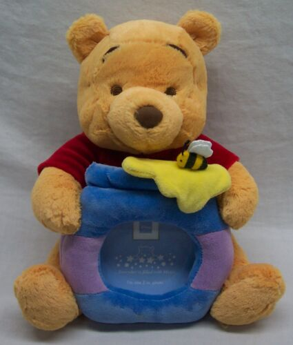 """Disney Baby SOFT WINNIE THE POOH BEAR 8"""" Plush Stuffed Animal WITH PICTURE FRAME"""