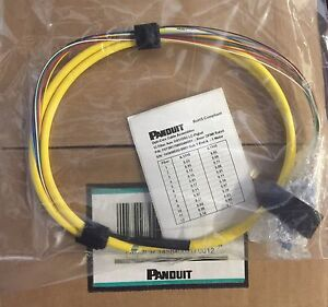 NEW Panduit patch cables