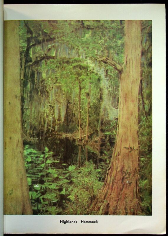 1982 The Way It Was Early Sebring Florida History Book Tuscawilla Park W/Map