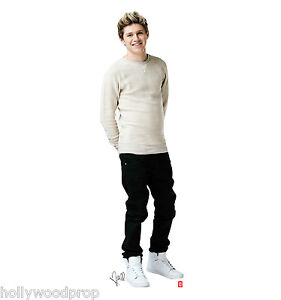 ONE DIRECTION 1D NIALL HORAN LIFESIZE CARDBOARD STANDUP STANDEE CUTOUT POSTER