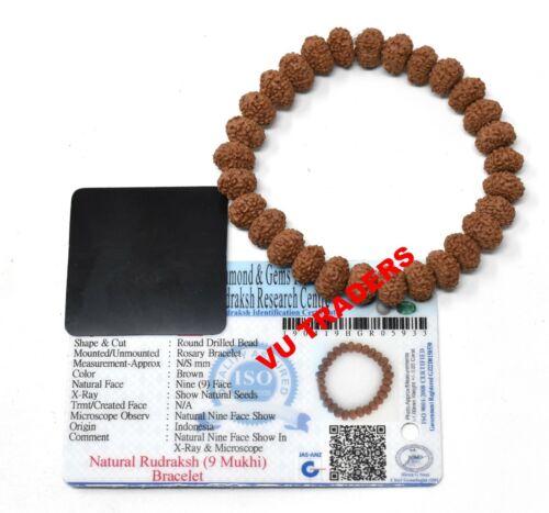 9 Mukhi Rudraksha Bracelet / Nine Face Rudraksh Wristlet Lab Certified 9-10 MM