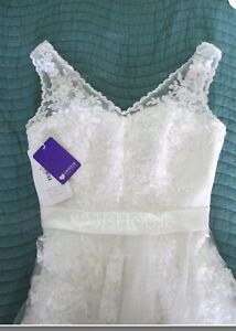Champagne A line/Princess Lace Wedding Dress