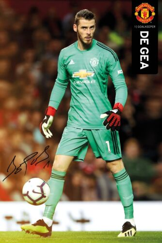 purchase cheap de4f4 16f14 David De Gea SIGNATURE Manchester United FC Goalkeeper ...