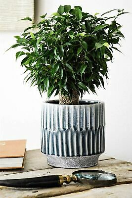 Ivyline Onno Planter Flower Plant Pot Embossed Design in Denim Blue 20cm