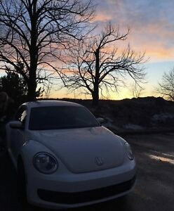 New beetle 2012 Blanche