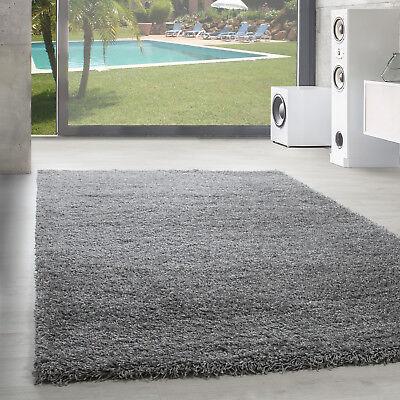 Chinesische Teppich (Hochflor Teppich Shaggy Langflor Uni Einfarbig Wohnzimmer Hellgrau Oeko Tex)