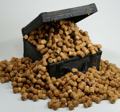 500 natural CHAMPAGNE corks  - variety of AUTHENTIC labels from an EXOTIC resort